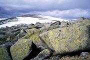 High on Ben Macdhui, the highest point in the Grampian region of Scotland.
