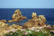 Granite sea stacks rise around the rugged coastline of Guernsey.